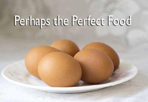 Egg Recipes For Breakfast Lunch Dinner