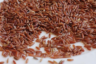 red rice type